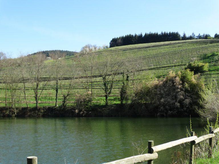 Photo prise de la digue du barrage